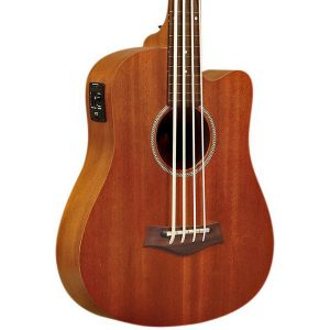 Top 10 Best Electric Acoustic Bass Guitars 2020 Review