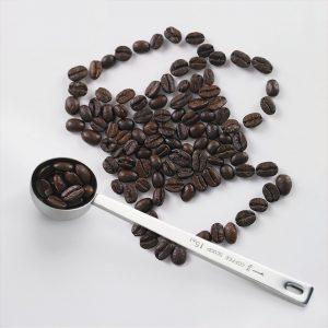 Leyaron Endurance Stainless Steel 1 Tablespoon Measuring Coffee Scoop, Set of 2