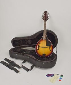 A Style Mandolin Sunburst Finish Professionally Set-Up In My Shop For Proper & Easy Play Hard Featherlite Case Included