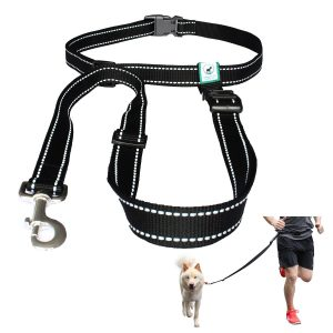 Caldwell's Pet Supply Co. Hands Free Reflective Running, Walking, Hiking and Jogging Dog Leash for Large and Small Dogs - Black