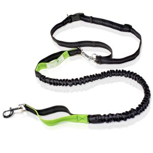 Paw Lifestyles Premium Hands Free Dog Leash, Double Handle, No Pull Leash with Retractable Shock Absorbing Bungee, Reflective Stitching and Adjustable Waist Belt,