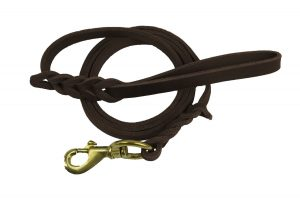 Premier 6ft Leather Dog Training Leash. Made from High Quality Leather and is a Great Option for Hunting Dogs or General Obedience in the Backyard