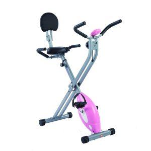 Sunny Health & Fitness Folding Recumbent Bike
