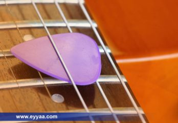 Top 10 Best Acoustic Guitar Pick For Beginners 2020 Review