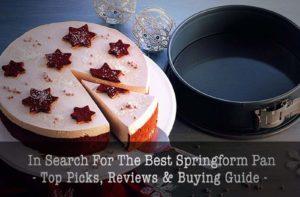 Best Baking Springform Pans