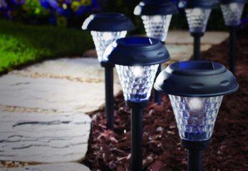 Best Solar Lamps