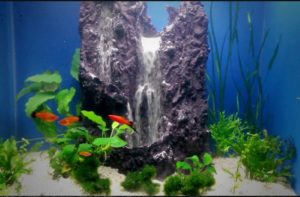 Top 10 Best Fish Tank Sand Waterfall / Fountain