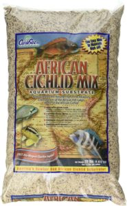 Carib Sea African Cichlid Mix